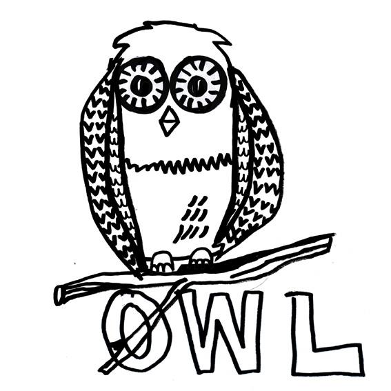 owl-shirt-2