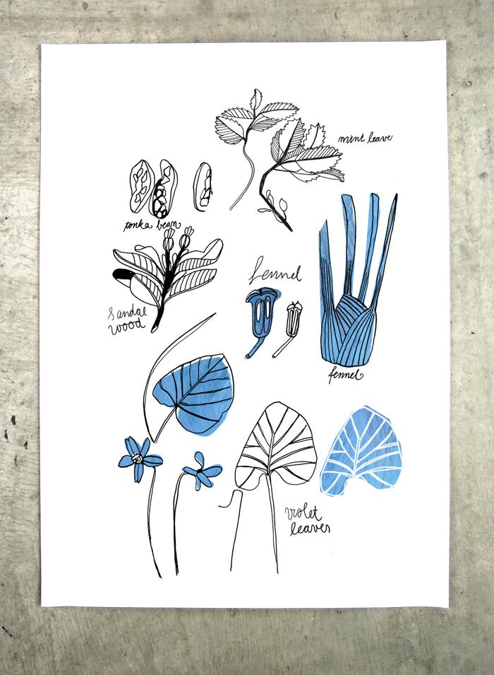 Perfume-Garden-herbs-poster-pfaller-1