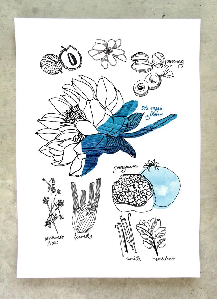 Perfume-Garden-herbs-poster-pfaller-2