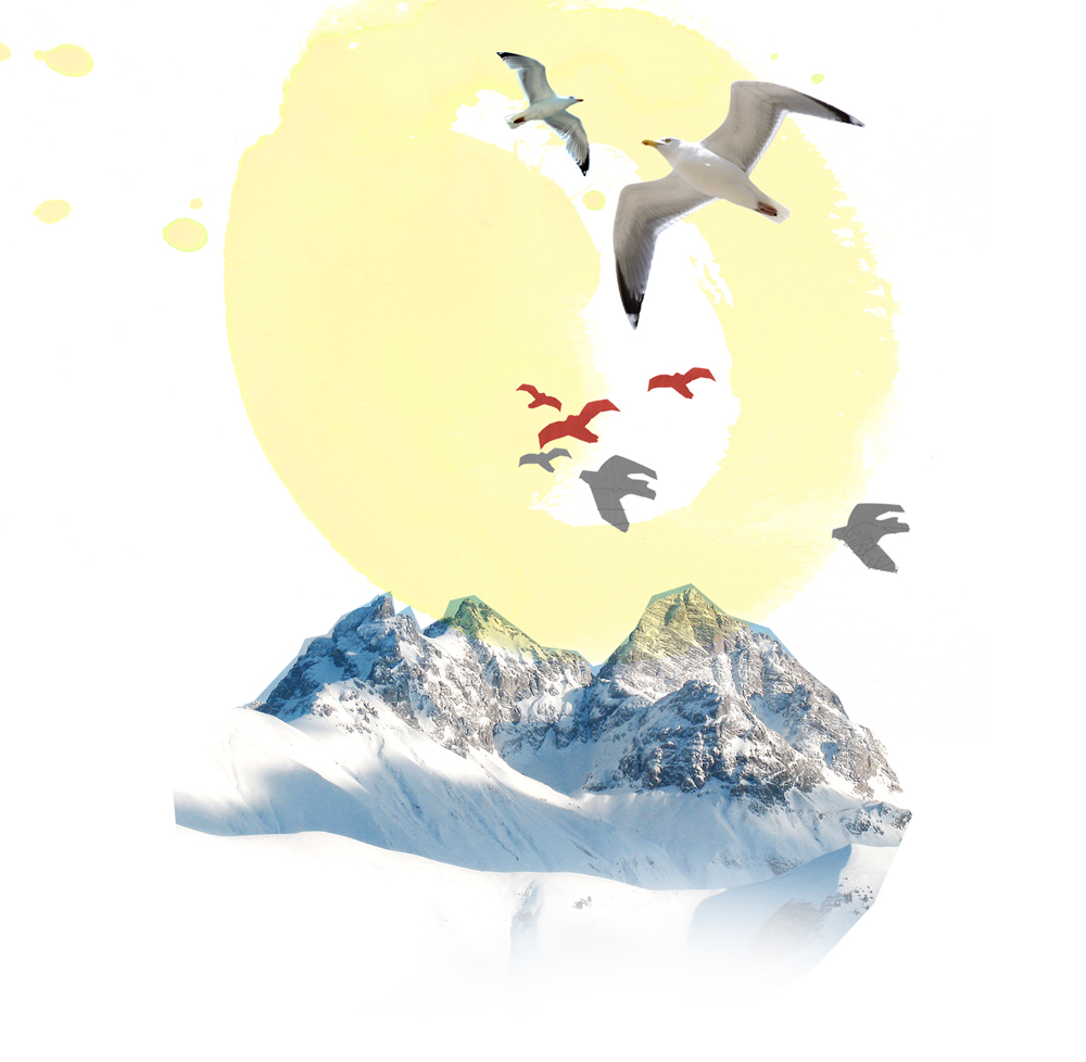 thalia-pfaller-illustration-buch-titel-berge-natur-2